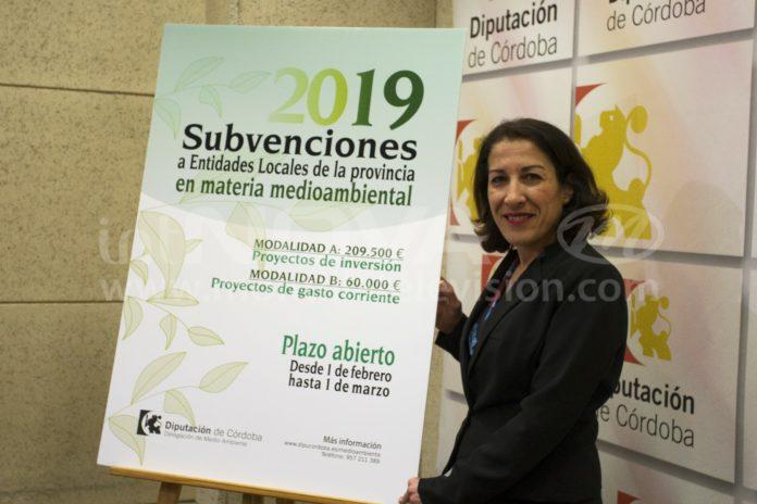 Subvenciones Medioambientales Diputación