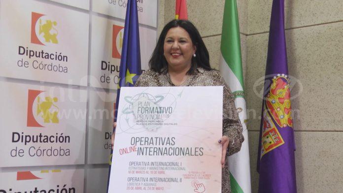 Plan Formativo Provincial Diputación